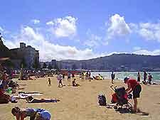 Wellington Beaches