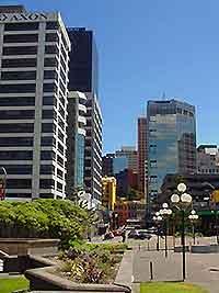 Wellington Business Tips
