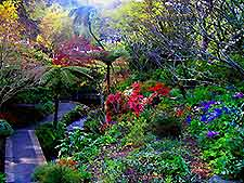Wellington Parks and Gardens