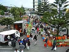 Wellington Markets
