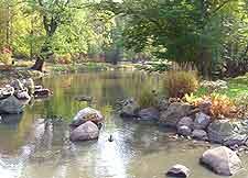 View of the Botanical Gardens (Ogrod Botaniczny)