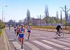 Picture of the springtime marathon race