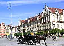 Photo of horse and carriage in the Old Market Square