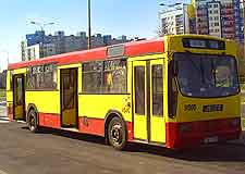 Picture of public bus transport