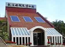 Picture of Xiamen's unique Piano Museum