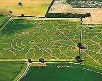 Aerial photograph of the York Maze
