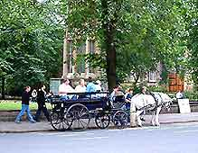 Photo of horse and carriage ride in York